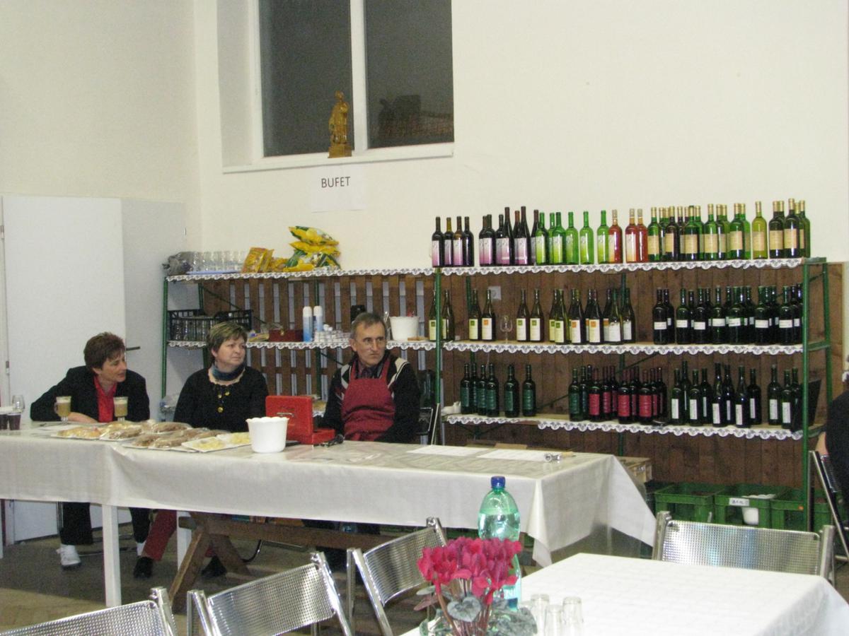 vinarsky-krojovany-ples-moutnice-2011-005.jpg